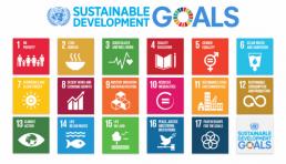 United Nations Sustainability Goals