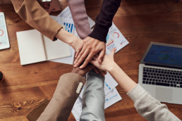 IDC diversity and inclusion in the it workforce
