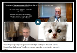 lawyer goes viral for kitten filter in zoom virtual court case