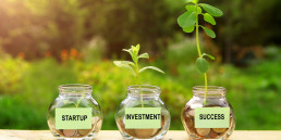 Startup, investment, success. Plants growing from coins outside the glass jars on blurred green natural background. Money saving and investment financial concept.